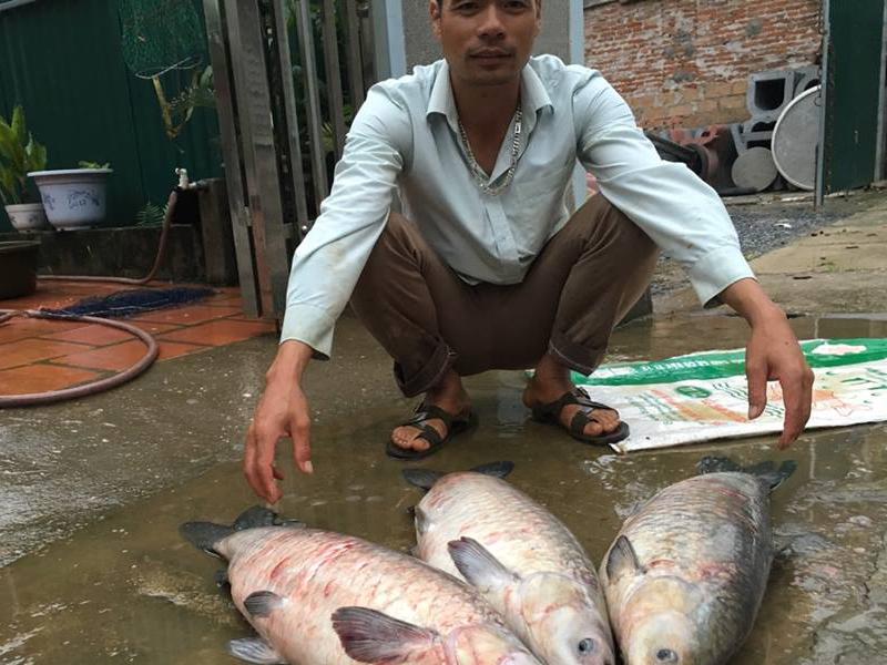 Hướng dẫn kỹ thuật câu nhấp bằng mồi cá chết   Cần câu cá ...